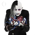 A PERFECT CIRCLE Eat the Elephant album cover