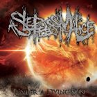 A SLEEPLESS MALICE Under a Dying Sun album cover
