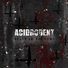 ACIDRODENT Below Absent Gods album cover
