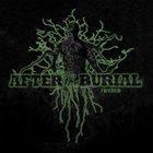 AFTER THE BURIAL Rareform (2009) album cover