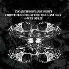AFTER THE LAST SKY 4-Way Split album cover