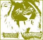 AGATHOCLES Agathocles / Holidaysuckers album cover