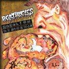 AGATHOCLES Agathocles / Rebelion Disidente album cover
