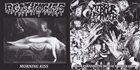 AGATHOCLES Agathocles / Terror Firmer album cover