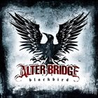 ALTER BRIDGE Blackbird album cover