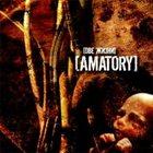 AMATORY Две жизни (Two Lives) album cover
