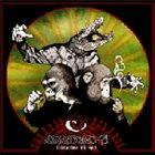 ANATOMI-71 Från Primat Till Reptil album cover