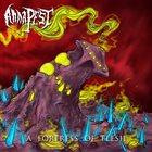 ANNA PEST A Fortress of Flesh album cover
