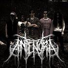 ANTENORA Antenora album cover