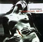 ANTIGAMA Blastasfuck album cover