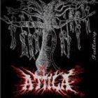 ATTILA Fallacy album cover