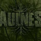 AULNES Aulnes album cover
