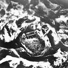 BELUS Anicon // Belus album cover