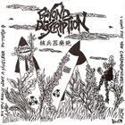 BEYOND DESCRIPTION Beyond Description / Kontrovers album cover
