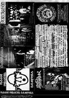 BEYOND DESCRIPTION Noise Induced Deafnes album cover