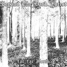 BEYOND THE DARK FOREST Far, Far North album cover