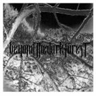 BEYOND THE DARK FOREST The Frost album cover