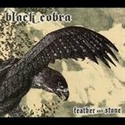 BLACK COBRA Feather and Stone album cover