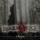 BLOOD MAY RISE Gloom album cover
