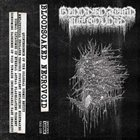 BLOODSOAKED NECROVOID Demo 1 album cover