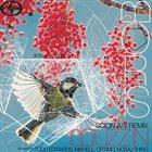 BORIS Scion A/V Remix: Buzz-In album cover