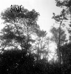 BOSQUE Dead Nature album cover