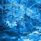BRACHIALILLUMINATOR Travels album cover