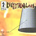 BUCKETHEAD Pike 171 - A Ghost Took My Homework album cover
