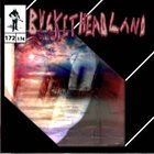 BUCKETHEAD Pike 172 - Crest Of THe Hill album cover