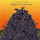 BUCKETHEAD Needle in a Slunk Stack album cover