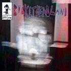BUCKETHEAD Pike 211 - Screen Door album cover