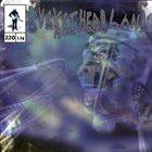 BUCKETHEAD Pike 220 - Mirror Realms album cover