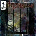 BUCKETHEAD Pike 233 - 22222222 album cover