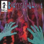 BUCKETHEAD Pike 54 - The Frankensteins Monsters Blinds album cover