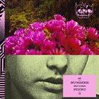 BUMMER Bummer / PINKO album cover