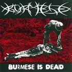 BURMESE Burmese Is Dead album cover