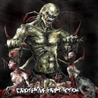 CARNAL DECAY Grotesque First Action album cover