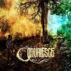 CONVALESCE Decisions album cover