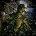 CROSS THE LIPS OF GRACE The Epilogue Of Suffering album cover