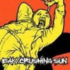 CRUSHING SUN Bipolar album cover