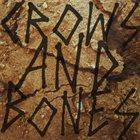 DEAD DINGO Crows And Bones album cover