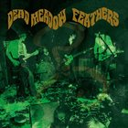 DEAD MEADOW Feathers album cover