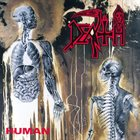DEATH — Human album cover