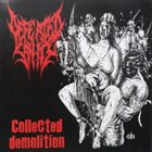DEFEATED SANITY Collected Demolition album cover