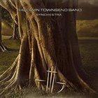 DEVIN TOWNSEND — Synchestra album cover
