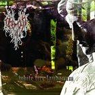 DHAMPYR White Fire Laudanum album cover