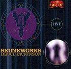BRUCE DICKINSON Skunkworks Live album cover