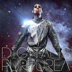 DIGITALIS PURPUREA Palindrome Shapes of Mold album cover