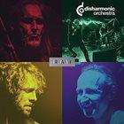 DISHARMONIC ORCHESTRA Raw album cover
