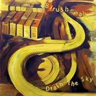 DRAIN THE SKY Birushanah / Drain The Sky album cover